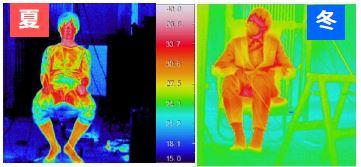 輻射温熱環境下のサーモグラフィー画像
